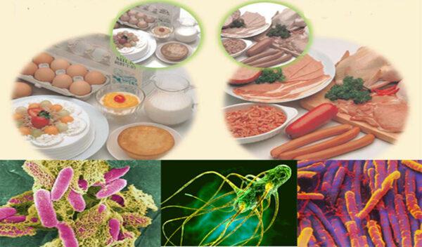 Thuốc trị ngộ độc thực phẩm do vi khuẩn